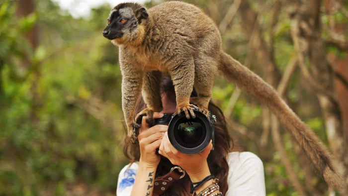 4. Animal Photographer
