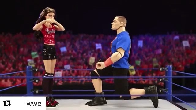 Last year in April, John Cena went down on his knees for Nikki Bella during live broadcast of Wrestlemania 33.