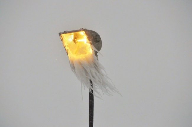 A bearded streetlight