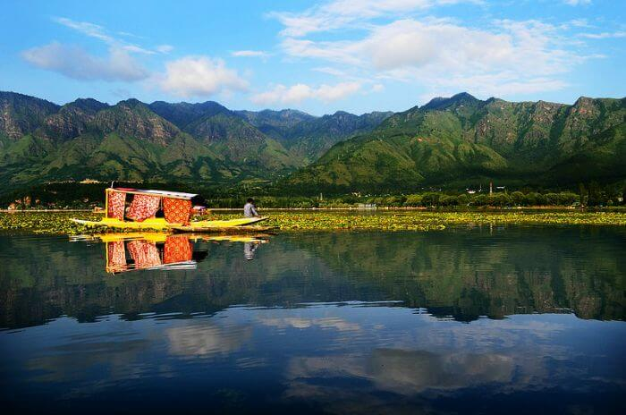 Dal Lake – The epitome of perfection and serenity