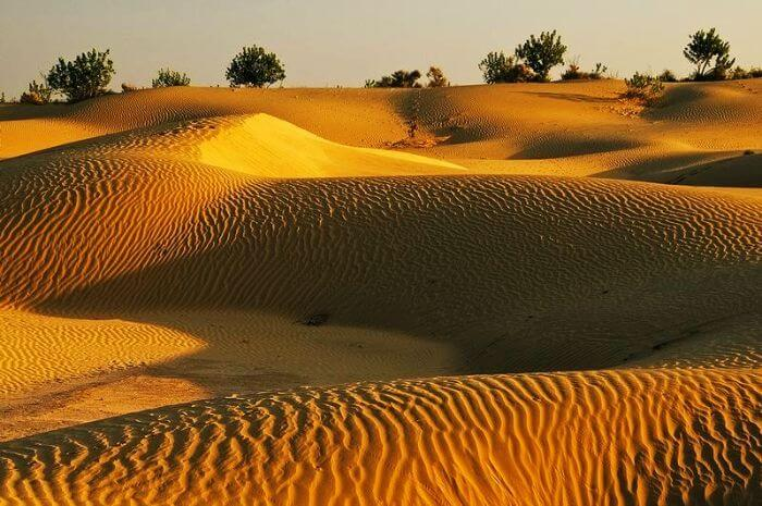 Sand Dunes, Jaisalmer – The colours of royalty
