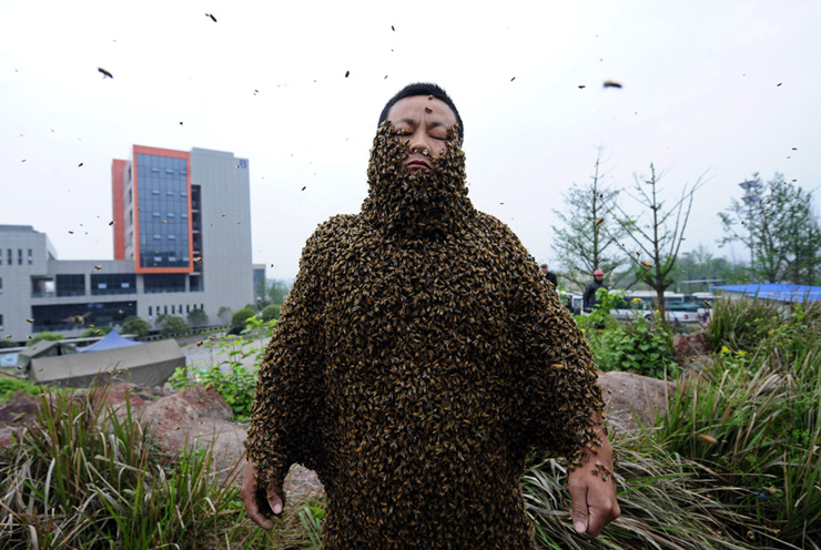 Beekeeper She Ping is covered with bees during a challenge to break the world record in Chongqing Municipality. She Ping, 32, broke the world record on Wednesday by covering his body with 33.1 kilograms of bees (about 331,000 bees), overtaking the last world record of 26.8 kilograms of bees which was attempted by a Jiangxi province beekeeper Ruan Liangming in 2008, local media reported.
