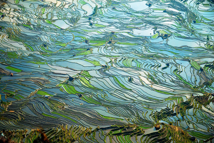 9.Terraced fields near Tiger-Mouth Village, Yuanyang, Yun