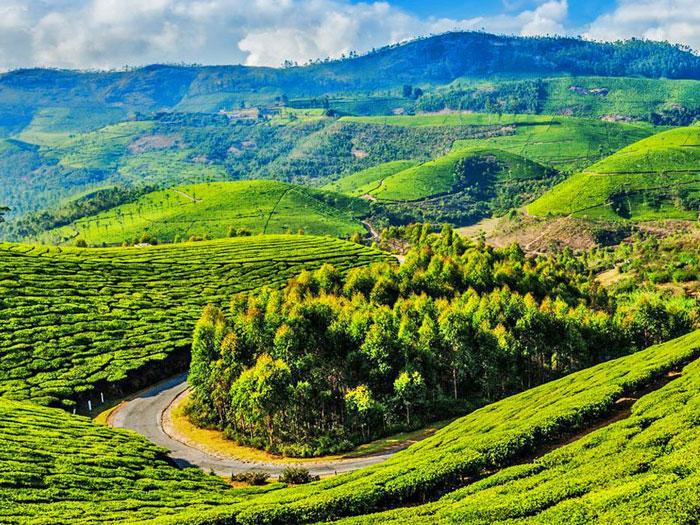 1. Coonoor Tamil Nadu