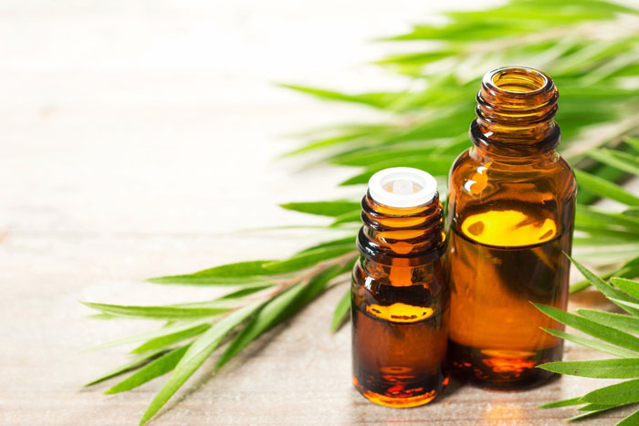12. Tea Tree Oil