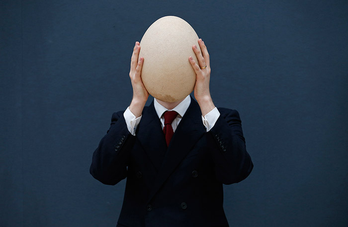 Pre-17th century, sub-fossilised Elephant Bird egg - The rare egg is expected to sell for 20,000-30,000 GB pounds (U.S. $30,000-45,000). The extinct Elephant Bird, a native of Madagascar, was a large bird measuring around 11 feet in height.