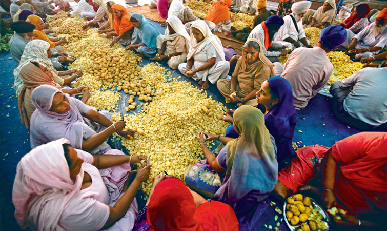 Volunteer for Sewa in Golden Temple, Amritsar