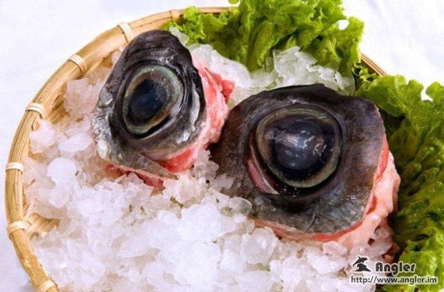 Tuna Eyeball Japan