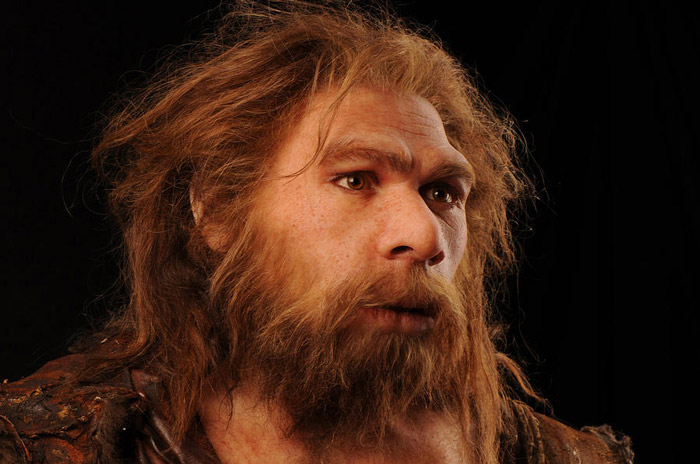6. The Neanderthal (Homo neanderthalensis) The big boys are here! Their remains were found all over Europe and western Asia. Neanderthals were still roaming the land not so long ago, about 24,000 years, and first appeared 130,000 years ago. And since our direct ancestors were living their lives,